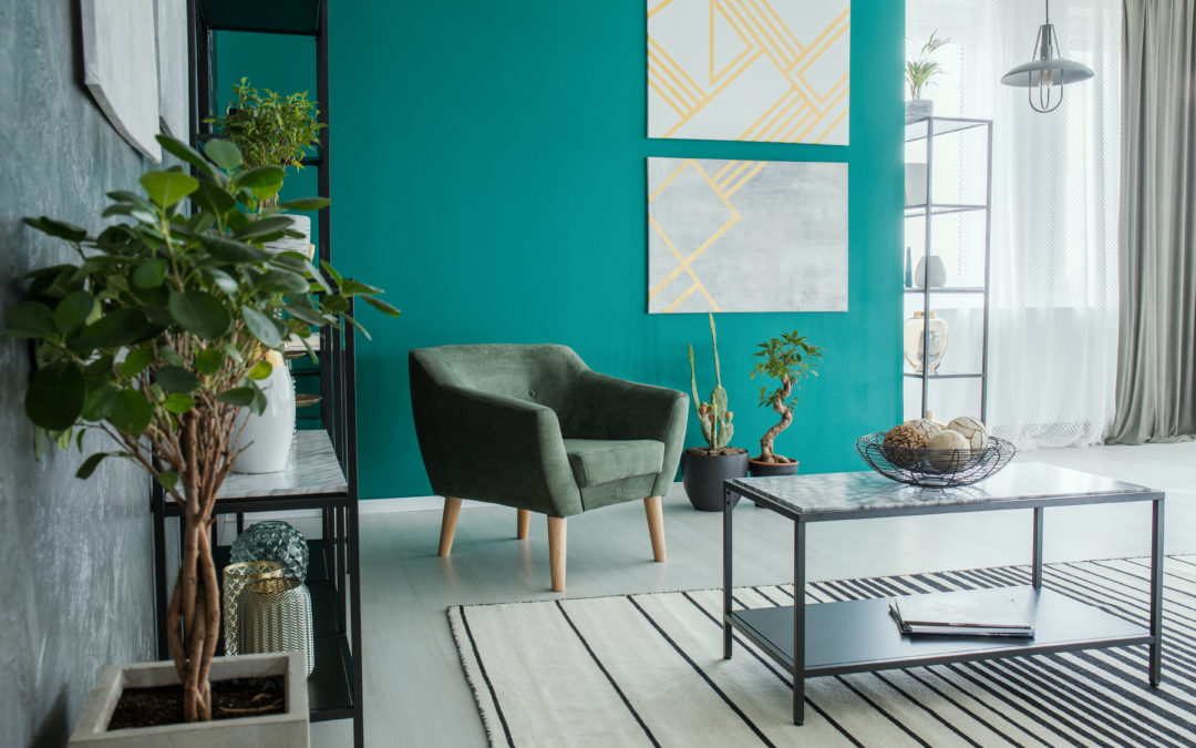 Plants & Paint: Colour Theory & Interior Design Tips